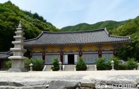 龍仁大長今パーク(旧 MBCドラミア)+民俗村+水原華城ツアー